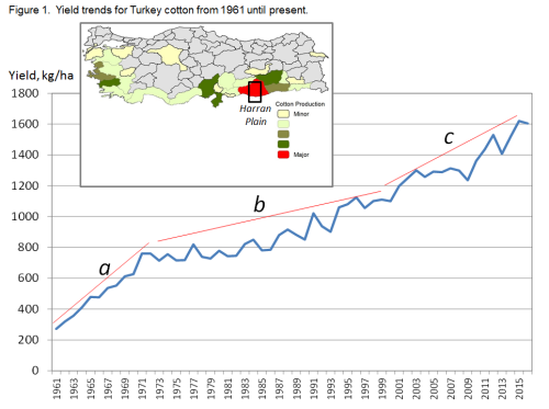 Turkey's Cotton Production by year