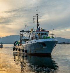largest fishing companies
